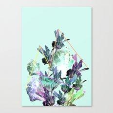 Neon Flowers - Charlotte Blue Canvas Print