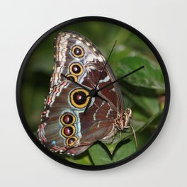 Spotted Butterfly Wall Clock