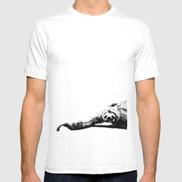 A Smiling Sloth T-shirt