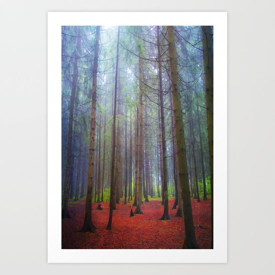 Back to the forest Art Print