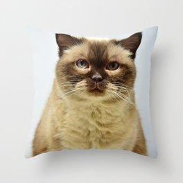 PAWSCH Throw Pillow