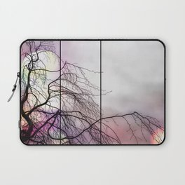 Beech in the sun Laptop Sleeve