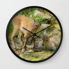 Baby capricorn Wall Clock
