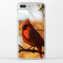 Mimosa tree cardinal Clear iPhone Case