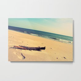 Bark by the beach Metal Print