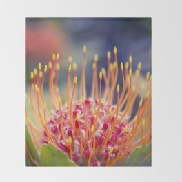 Tropical Sunburst - Leucospermum Pincushion Protea Flower Throw Blanket