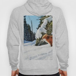 Happy Red Fox in Fresh Snow in Algonquin Hoody