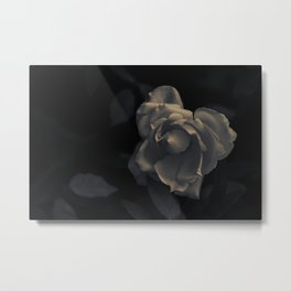 FLOWER • Rose Photography #1 •  Black and White Metal Print