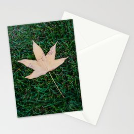 Fall Leaf on Grass Stationery Cards
