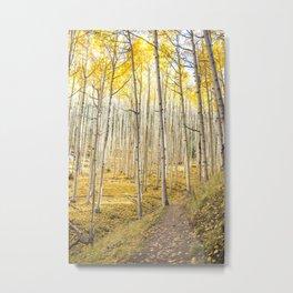 Fall Colors, Yellow Woods Metal Print