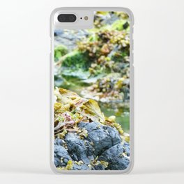Seaweed Series 5 Clear iPhone Case