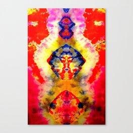 Tye Dye Print Canvas Print