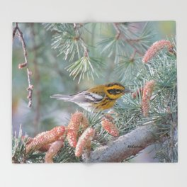 A Townsend's Warbler Spruces Up Throw Blanket