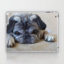 Holly the Pug Laptop & iPad Skin