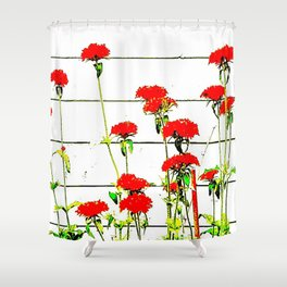 flowers many red Shower Curtain