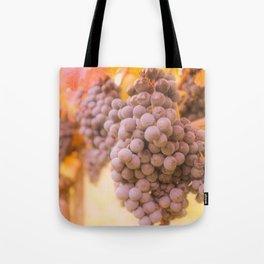 From Tuscany vineyard Tote Bag