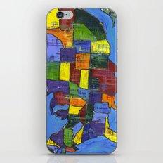 U.S.A. iPhone & iPod Skin