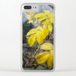 Frozen Drops Clear iPhone Case