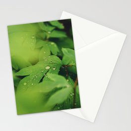 Mystical garden Stationery Cards