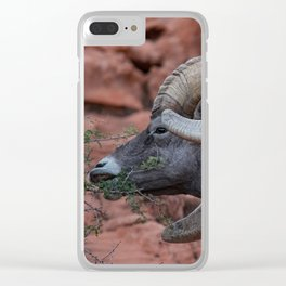 Breakfast - Valley of Fire Resident Clear iPhone Case