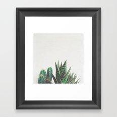 Cactus & Succulents Framed Art Print
