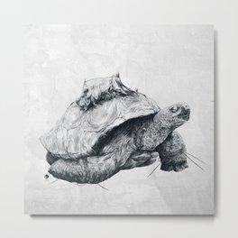 Tortoise Tree - Fall Metal Print