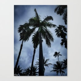 Palm Trees of Waikiki Canvas Print