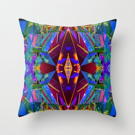 3D19 Throw Pillow