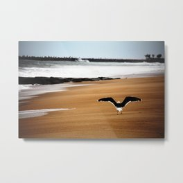 Tour De Shore Metal Print