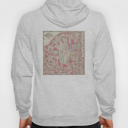 Vintage Map of The Adirondack Mountains (1865) Hoody