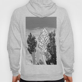 Alpinia purpurata – Red Ginger Flower - Black and White Greyscale Hoody