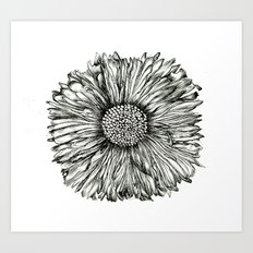 Graphic Floral  Art Print