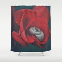 snail Shower Curtains featuring Snail by pf_photography