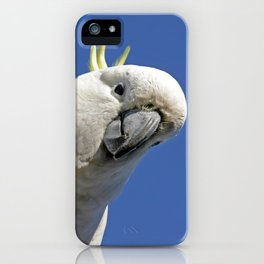 Cockatoo sees you while your sleeping iPhone Case