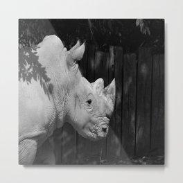 Rhino Portrait Metal Print