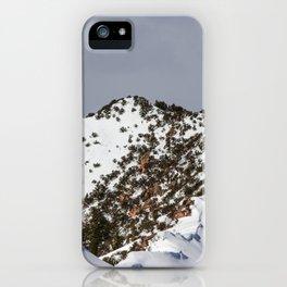Majestic Mountain iPhone Case