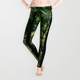 Path Along Ravine Leggings