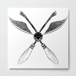 Quidditch Metal Print