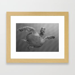Sea Turtle Line Pattern In Black And White Framed Art Print