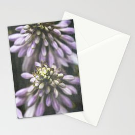 Hosta Stationery Cards