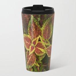 Coleo Coleus Travel Mug