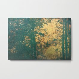 Vintage forest old photography Metal Print