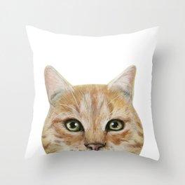 Golden British shorthair, America shorthair, cat, acrylic illustration by miart Throw Pillow