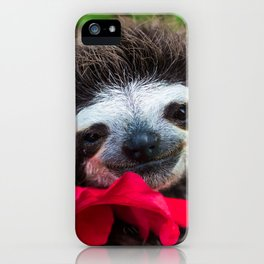 Bradypus Sloth iPhone Case