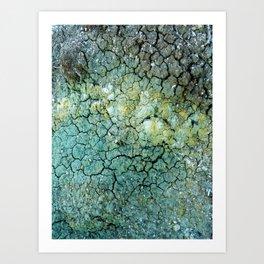 Wild Clay Art Print