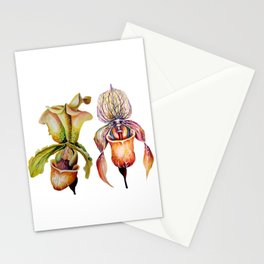 Watercolor Paphiopedilum  Orchids in Vivid Colors Stationery Cards