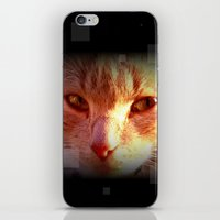ginger iPhone & iPod Skins featuring Ginger by Emsify