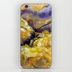 Koyaanisqatsi iPhone & iPod Skin