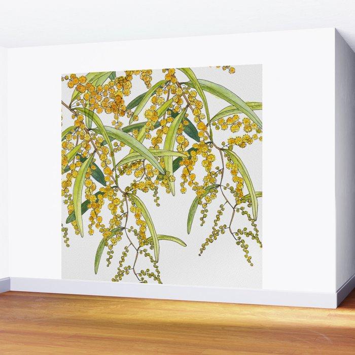 Australian Wattle Flower, Illustration Wall Mural