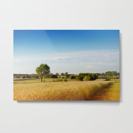 Rural wheat field view Metal Print
